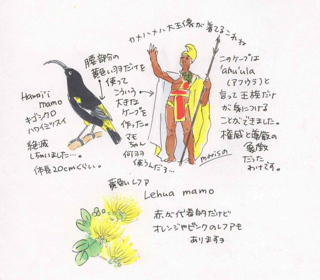 カメハメハ大王と黄色いレフアのイラスト