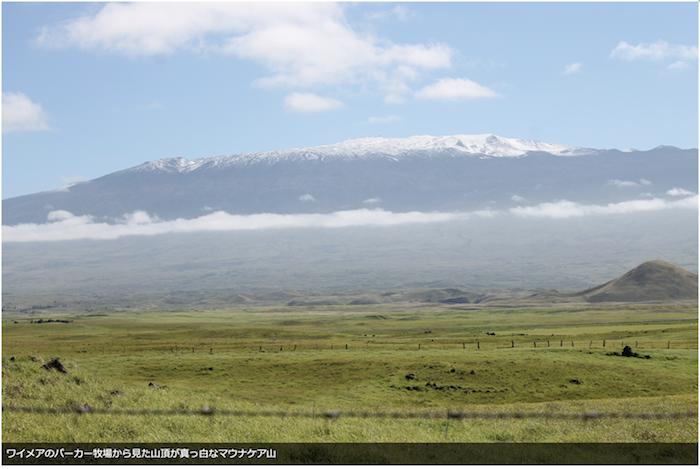 ワイメアのパーカー牧場から見た山頂が真っ白なマウナケア山
