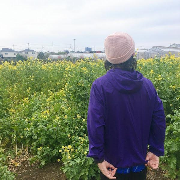 ランニングと菜の花